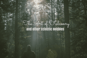 The Art of Falconry The Art of Falconry and other Eclectic Hobbies