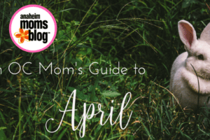An Orange County Mom's Guide to (1)