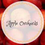 Apple Orchards of Southern California