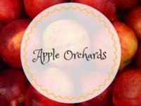 apple picking orange county