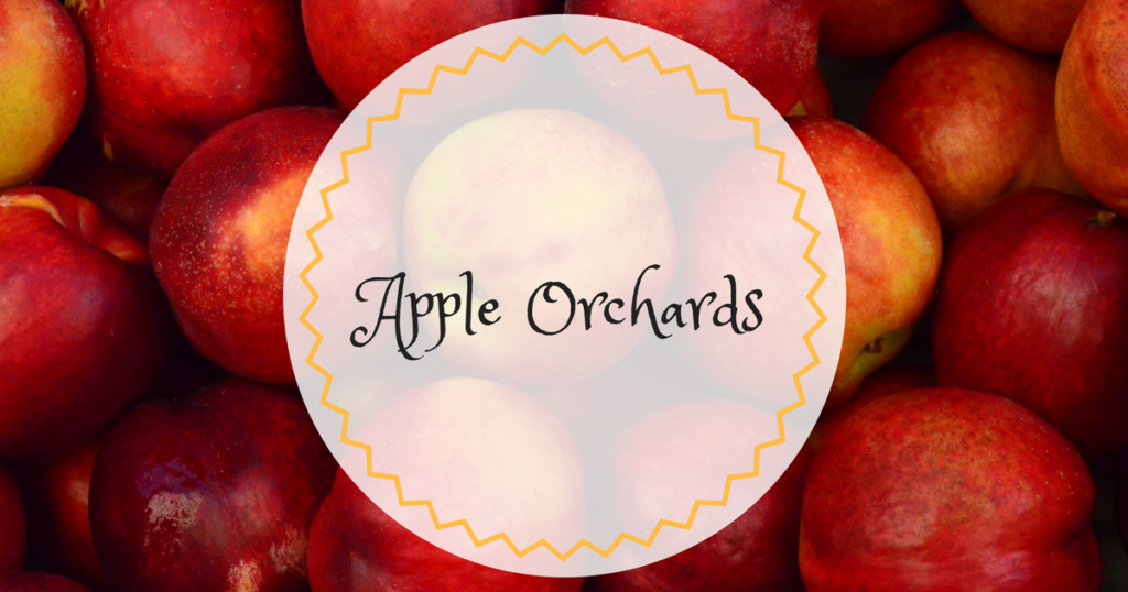 Apple Orchards Orange County
