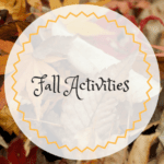 Fall Activities in Orange County