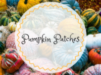 Orange County Moms Blog Guide to Fall