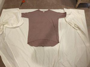 Diy no sew easy princess leia costume eco friendly and cheap too diy no sew princess leia costume solutioingenieria Image collections