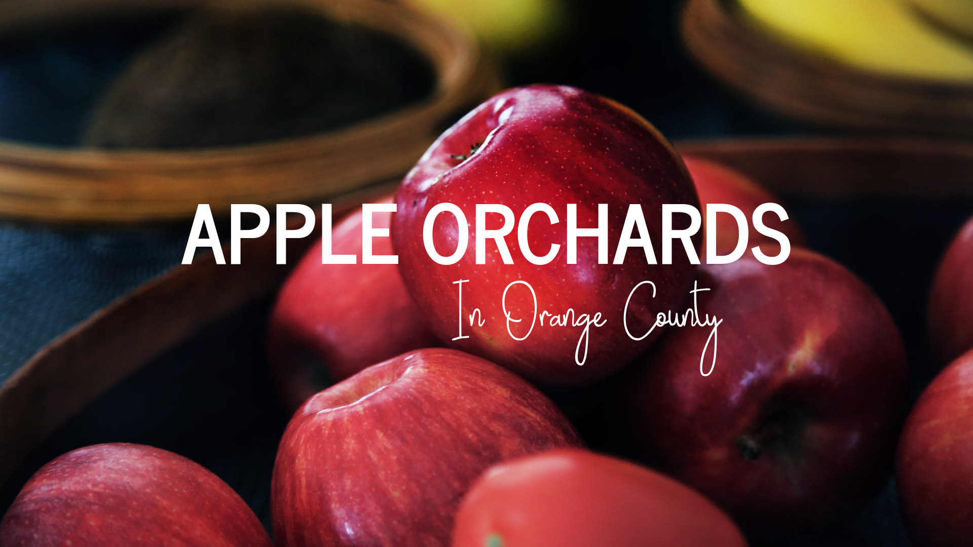 Apple Orchards in Orange County