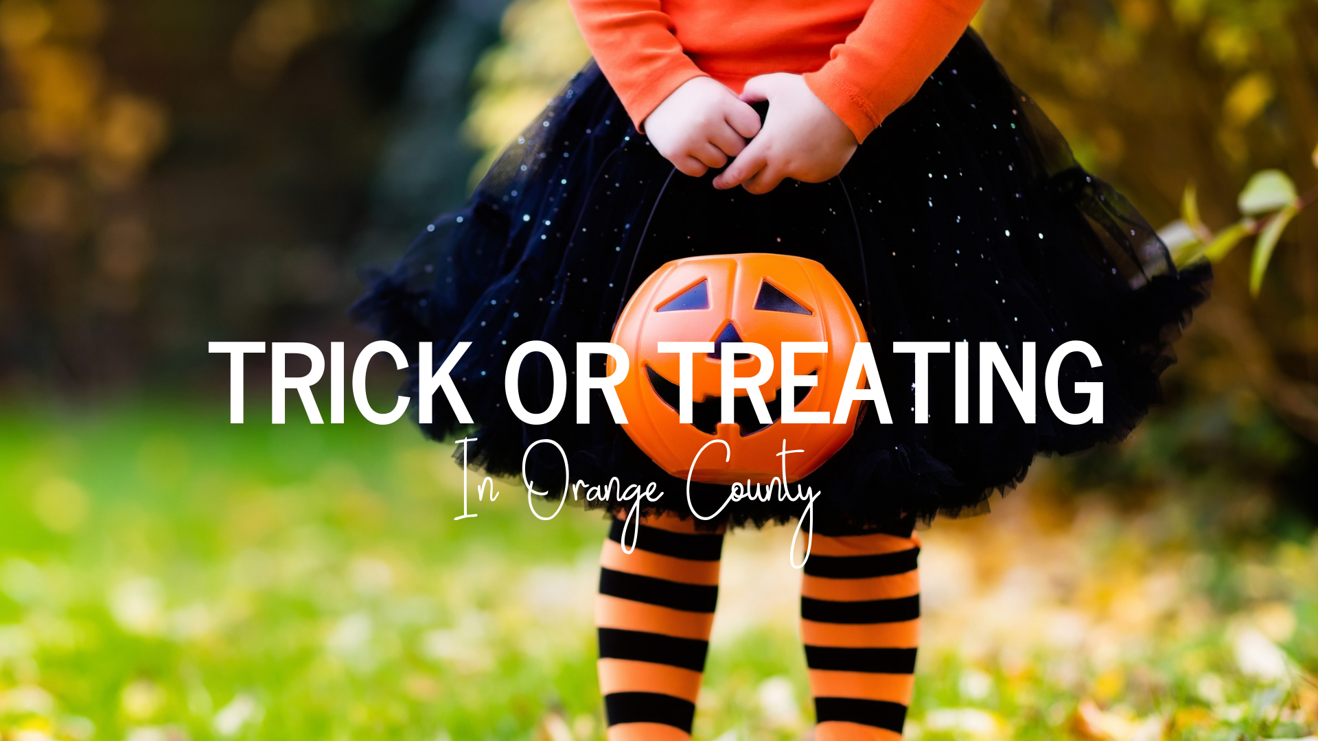 trick or treating in orange