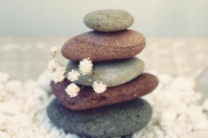 wellness reimagined