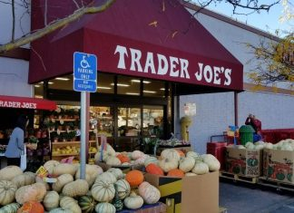My Top 20 Trader Joe's Fall Favorites