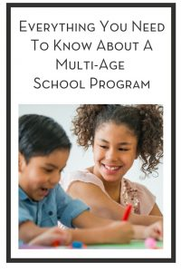 Everything You Need To Know About A Multi-Age School Program PIN