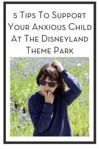 5 Tips To Support Your Anxious Child At The Disneyland Theme Park PIN