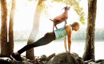 6 Important Life Lessons From Goat Yoga
